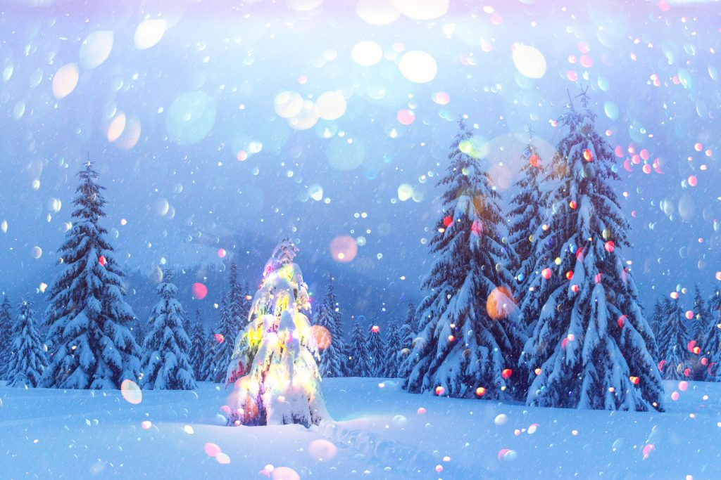 Holiday landscape with Christmas tree, snow and lights in winter mountains. New year celebration postcard collage. DOF bokeh light postprocessing effect